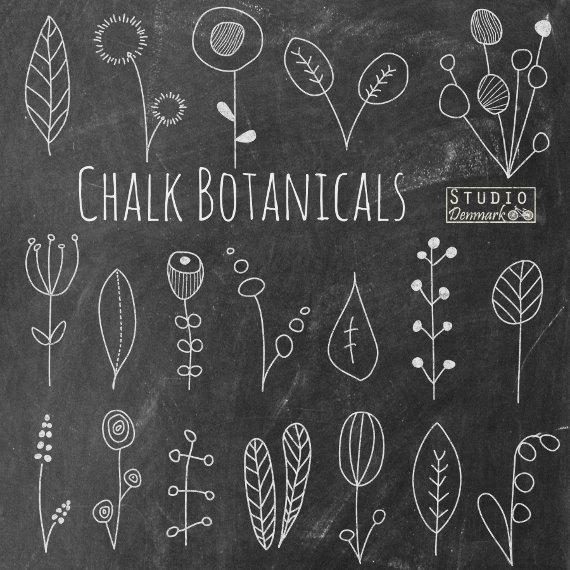 Chalk Botanicals clip art from Etsy shop StudioDenmark