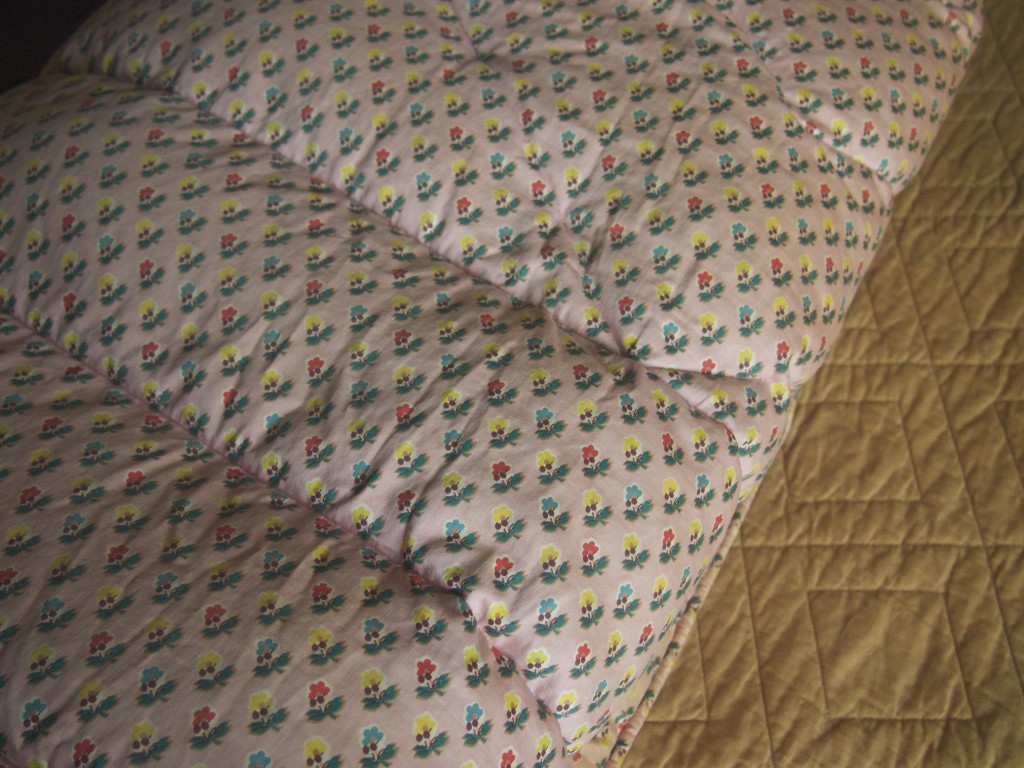 I used to sleep under this quilt at my grandparents' house when I was a girl. My great-grandmother filled it with down from her own animals.